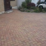 After Clean and Solvent-Free Sealer